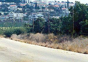 Шломи. Фотография с сайта shelomi.info